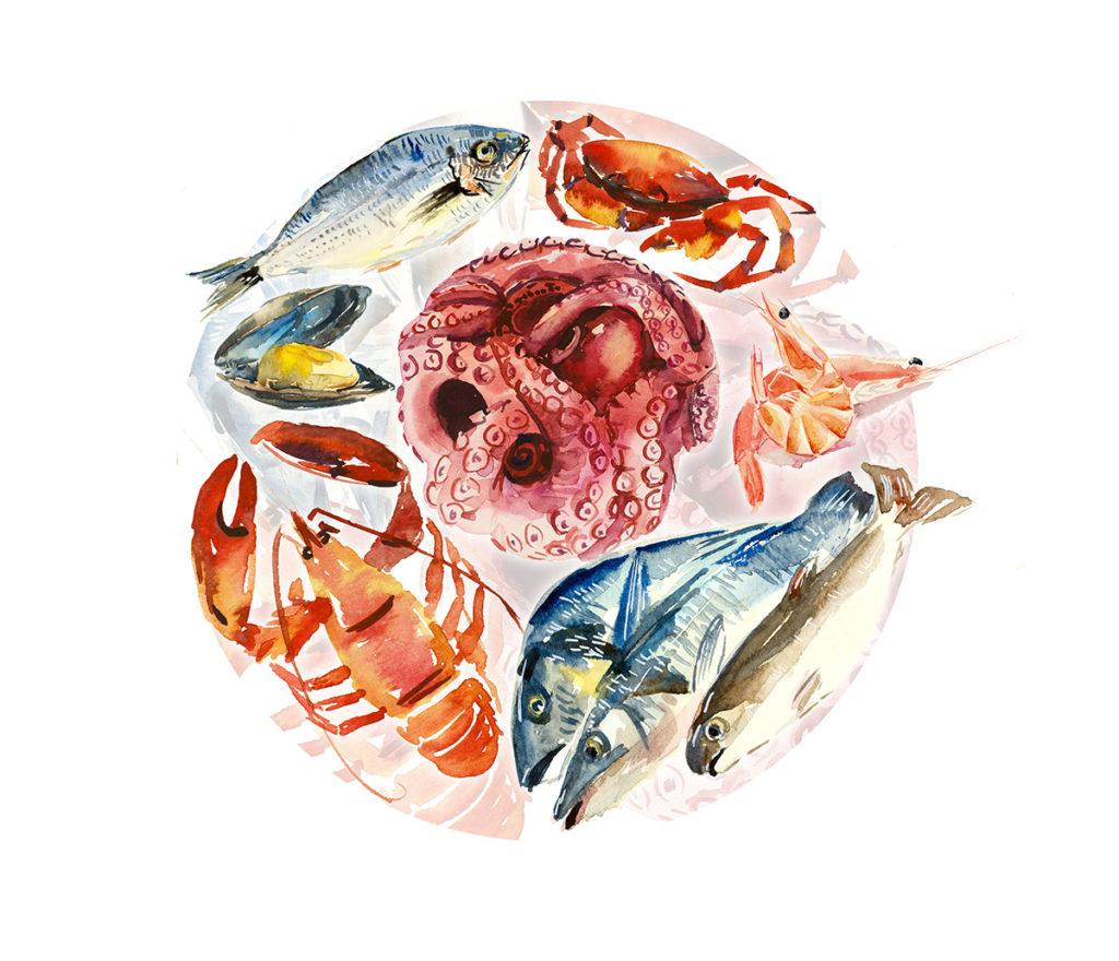 sen-olio-sabina-etichetta-nera-pesce